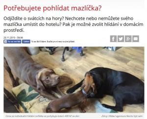 CtiDoma_reklama